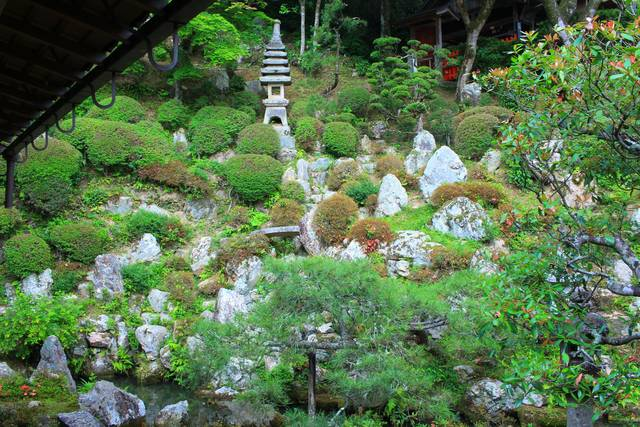 名勝庭園 浄土苑