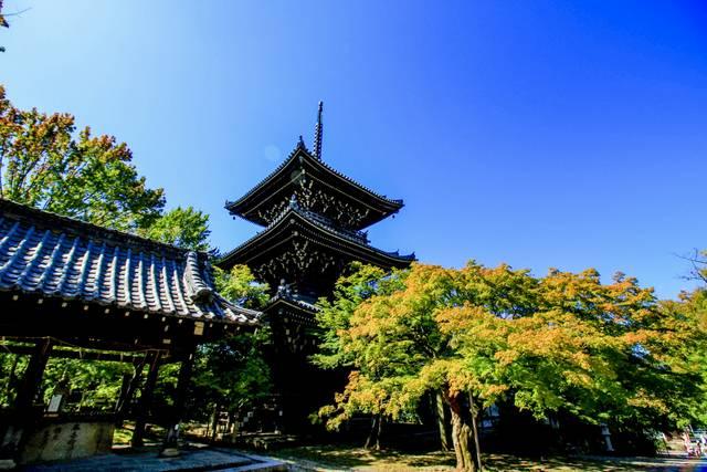 三重塔と手水舎