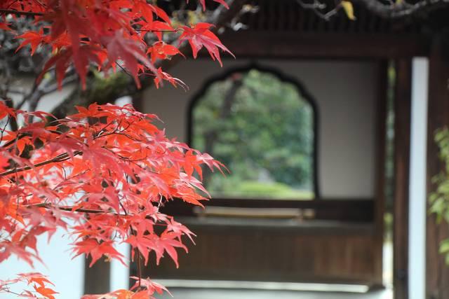 唐門の花頭窓