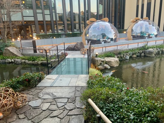 800年の時を超えて、池庭「積翠園」にドーム出現!