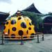 水玉かぼちゃと芸舞妓が集う歌舞練場の共演!大正建築に映える現代アート「草間彌生展」【フォーエバー現代美術館】