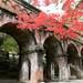 【2017京都紅葉最新】東山の人気紅葉名所!三門まわりは見頃!!今週からライトアップも始まります☆「南禅寺」