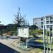 【京都薬科大学】キャンパス見学!漢方薬や医薬品の基となるマニアック薬用植物が300種類☆「薬用植物園御陵園」