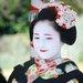 【梅花祭】春はすぐそこに・・・2月25日に梅花祭が行われます「北野天満宮」