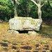 【京都古墳めぐり】石室で古代ロマン体験☆「大枝山古墳群(桂坂古墳の森)」
